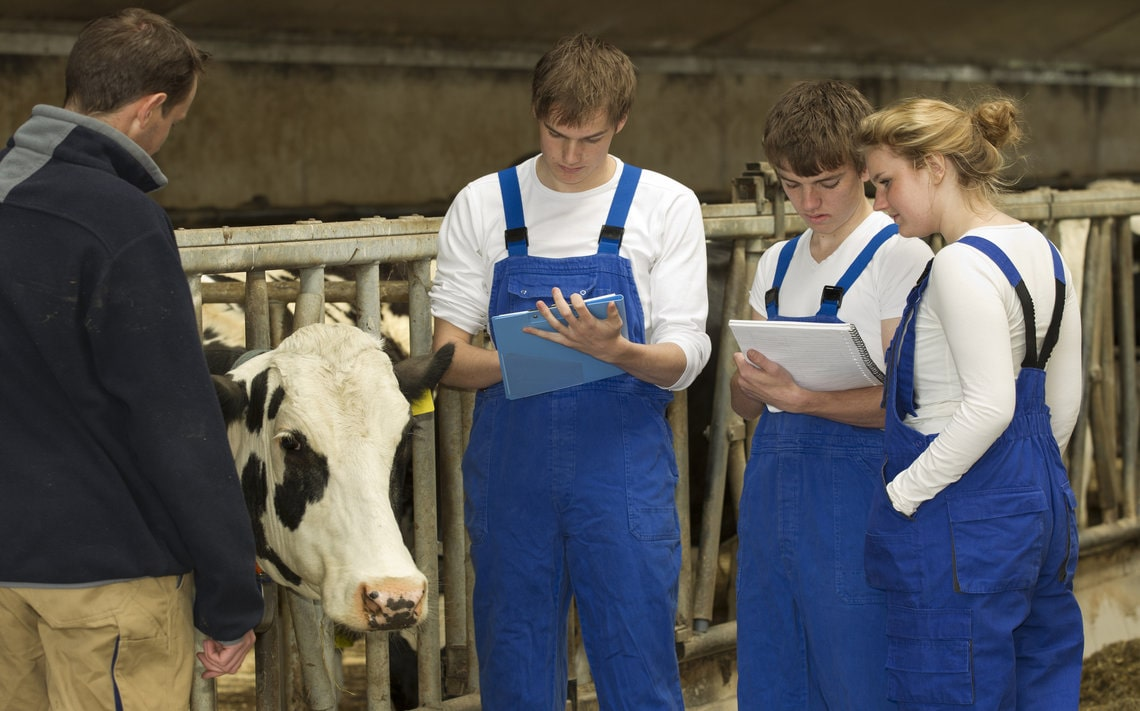 Book A Farm Safety & Welfare Awareness Course