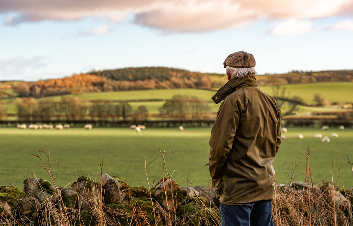 Farmers concerned after calls to convert 50% of UK farmland to nature