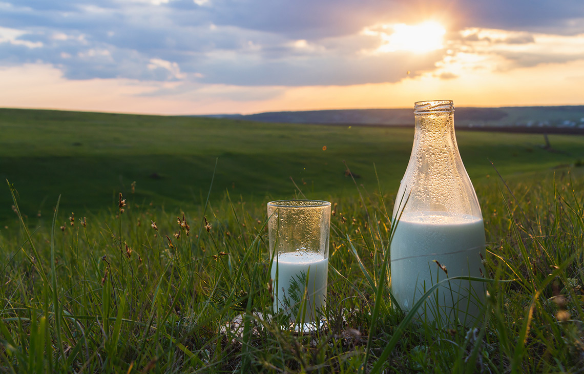 UK dairy farm set to be first single use plastic free farm