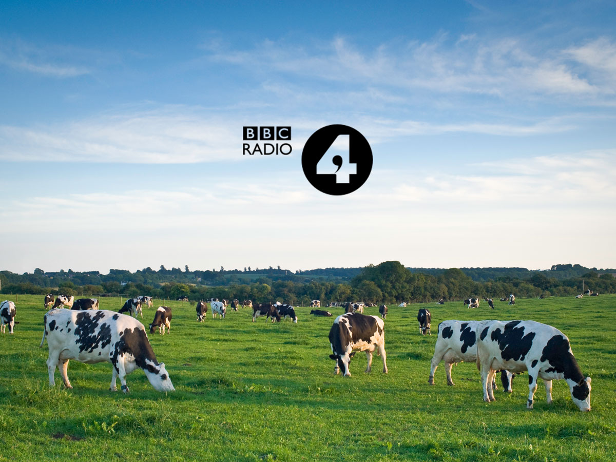 Managing Director speaks to Radio 4's Today Programme on the Labour situation in the dairy sector