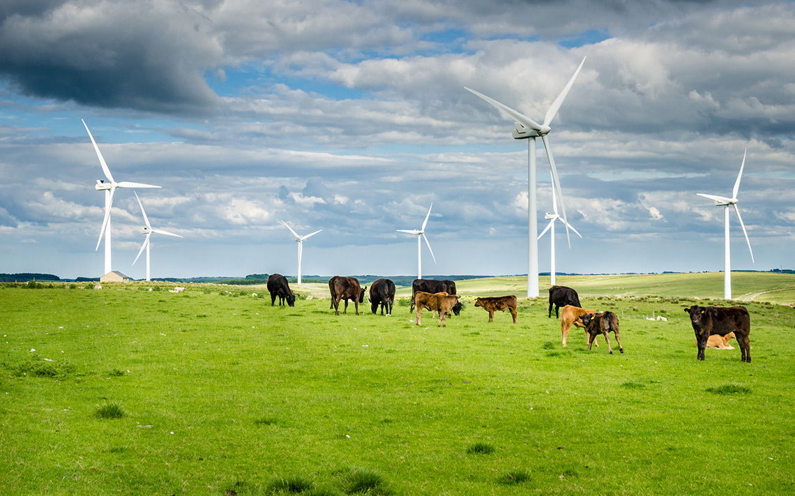 UK dairy industry joins global sustainability initiative