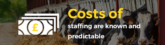 Costs of Staff